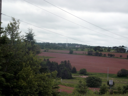 Prince Edward Island - Red Earth  - All natural